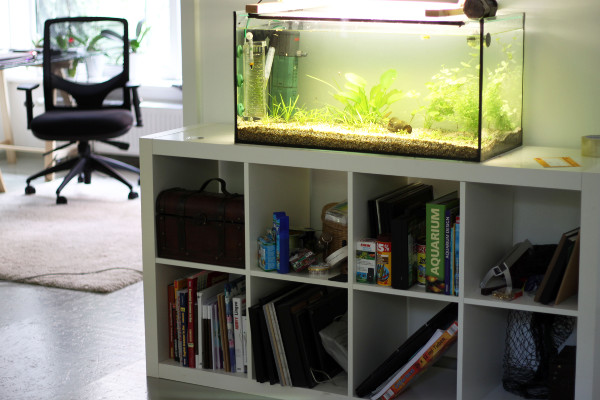 Aquarium Unterschrank Ikea : aquariumunterschrank kosmonautin ~ Watch28wear.com Haus und Dekorationen